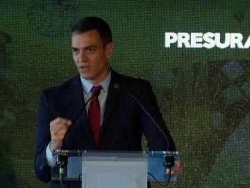 """Pedro Sánchez afirma que en un 1 año se recuperará la afiliación a la seguridad social: """"En 2008 tardamos 12 años"""""""