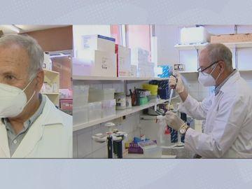Se investiga el origen del coronavirus.