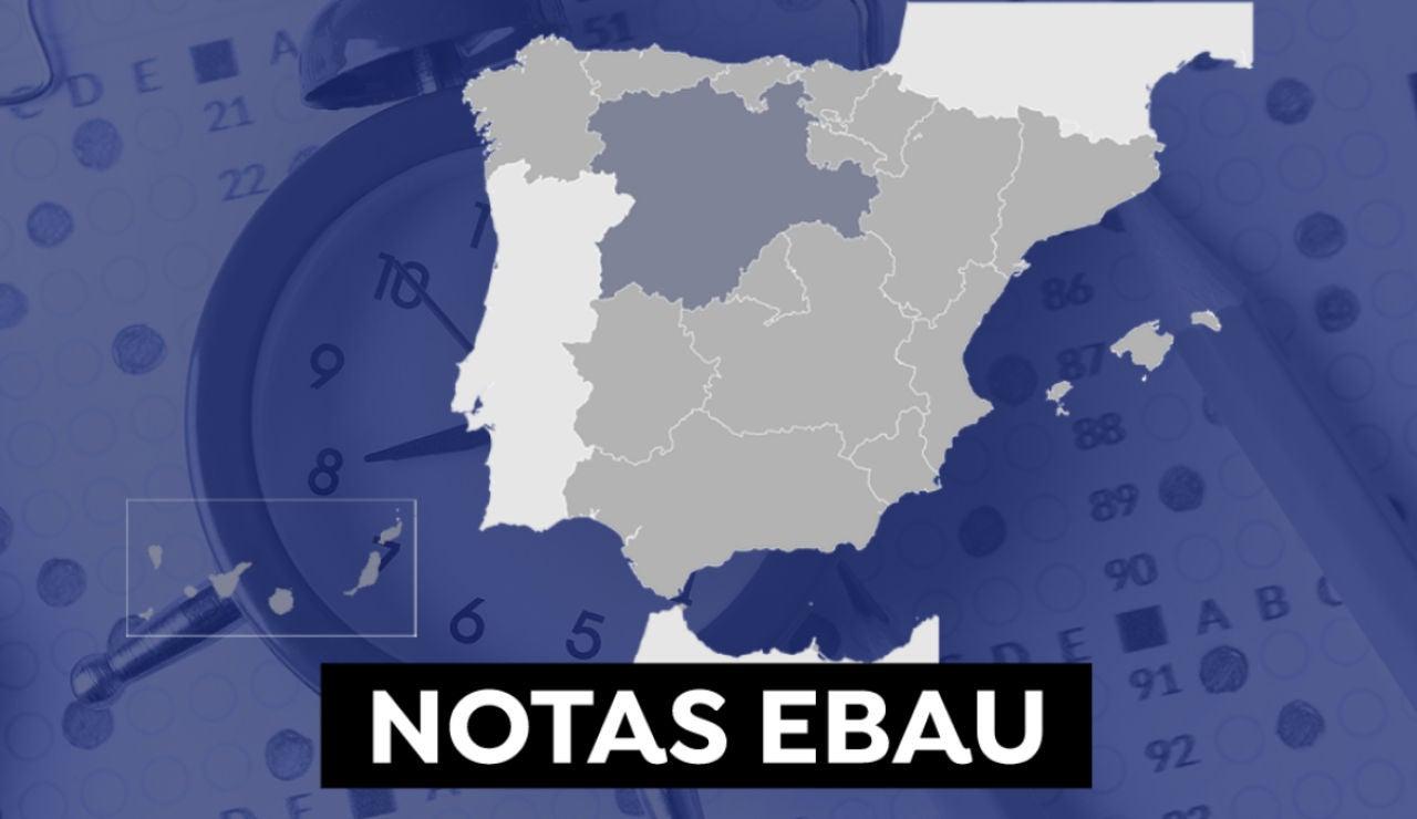 Notas de la Ebau en Navarra 2021: Consultar los resultados de selectividad