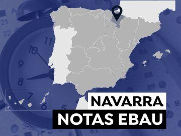 Notas de la Evau en Navarra 2021: Consultar los resultados de selectividad