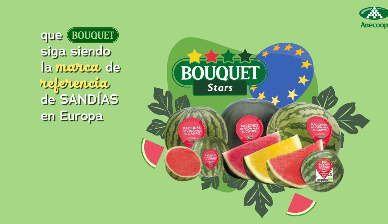 Las sandías sin pepitas Bouquet, líderes del mercado europeo