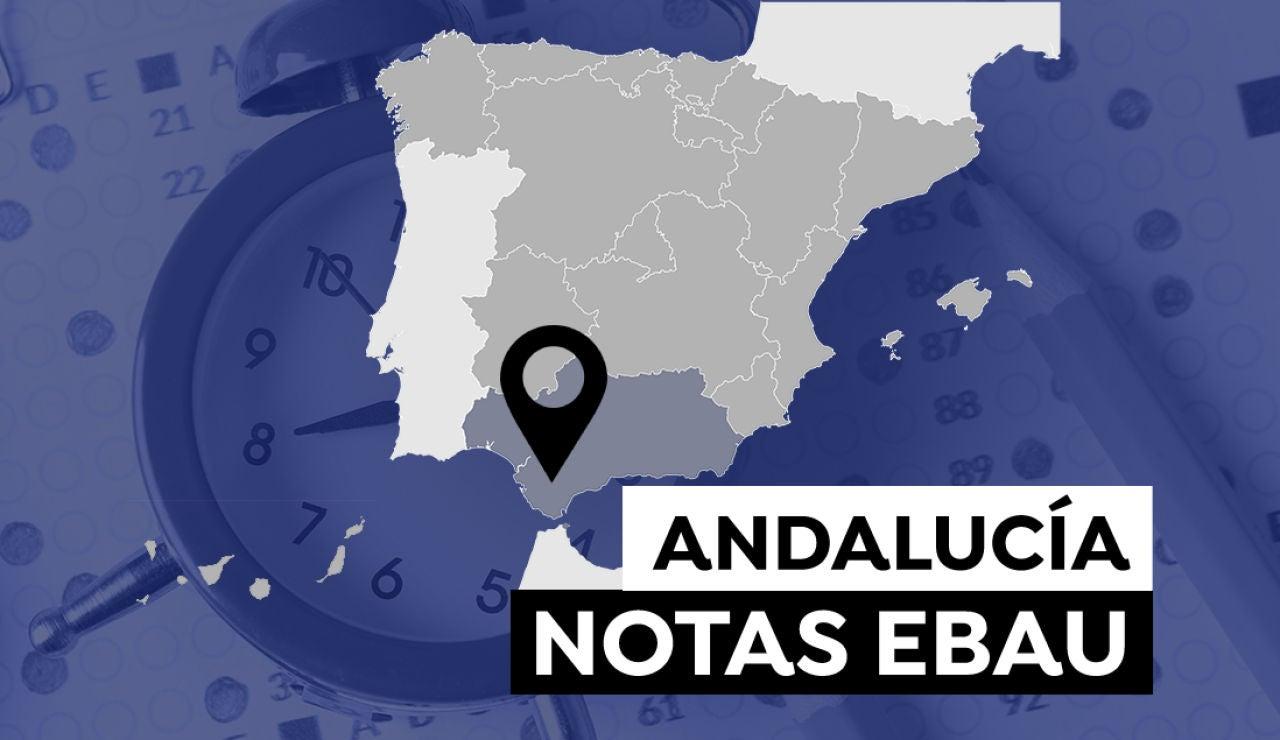 Notas de la Evau en Andalucía 2021: Consulta el resultado de la selectividad