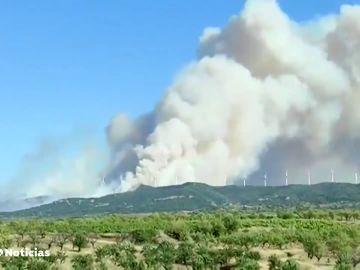 La Rioja pide ayuda a la UME por un incendio que ha quemado 200 hectáreas del monte de Yerma
