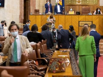 El presidente andaluz, Juanma Moreno (centro al fondo) y varios diputados buscando una rata que ha irrumpido este miércoles en el salón de plenos del Parlamento andaluz durante el inicio del pleno, lo que ha causado un gran revuelo entre los diputados y ha obligado a parar la sesión hasta que han conseguido echarla.
