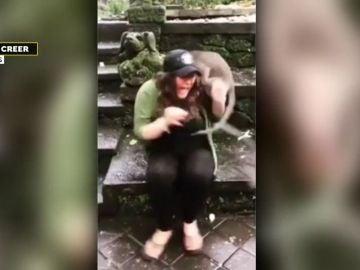Atacada por un mono en Bali.