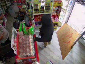 Detienen al ladrón que robó en un estanco de Gijón a punta de pistola