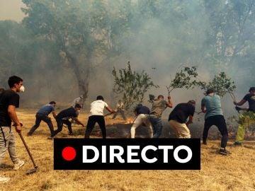 Incendio Ávila hoy: Última hora de Navalacruz y el avance del fuego por el incendio forestal