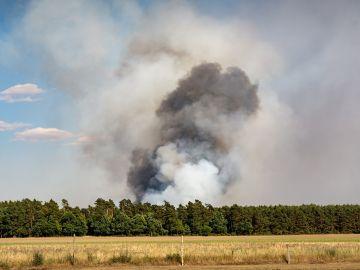 Preocupación por un incendio con cinco focos en San Felices de los Gallegos, en Salamanca