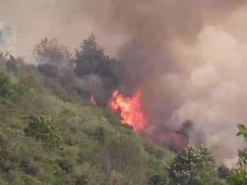 Controlado un incendio que ha quemado 125 hectáreas en Ezcaray, La Rioja