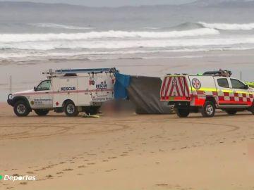 Muere un surfista en Australia tras se atacado por un tiburón