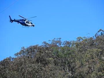 Rescatan a niño de 3 años tras 4 días desaparecido en un bosque de Australia
