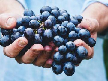 Uvas, un alimento que aporta mucha energía: Beneficios y propiedades nutricionales