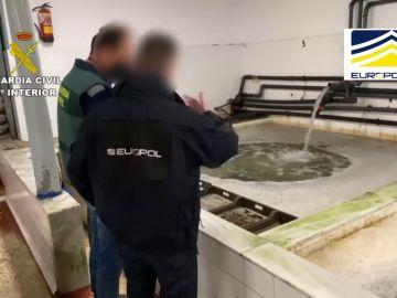 La Guardia Civil interviene en Huelva 16 toneladas de moluscos procedentes del marisqueo ilegal