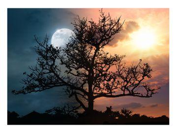 Cuánto dura el día y la noche durante el equinoccio de otoño