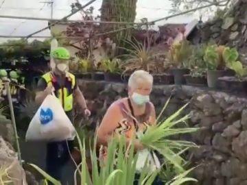 La erupción del volcán en La Palma afecta ya a entre 300 y 400 explotaciones agrícolas, especialmente de plátano