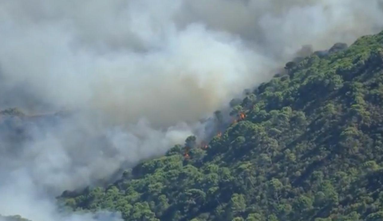 El Gobierno declara zona catastrófica los territorios afectados por el incendio en Sierra Bermeja