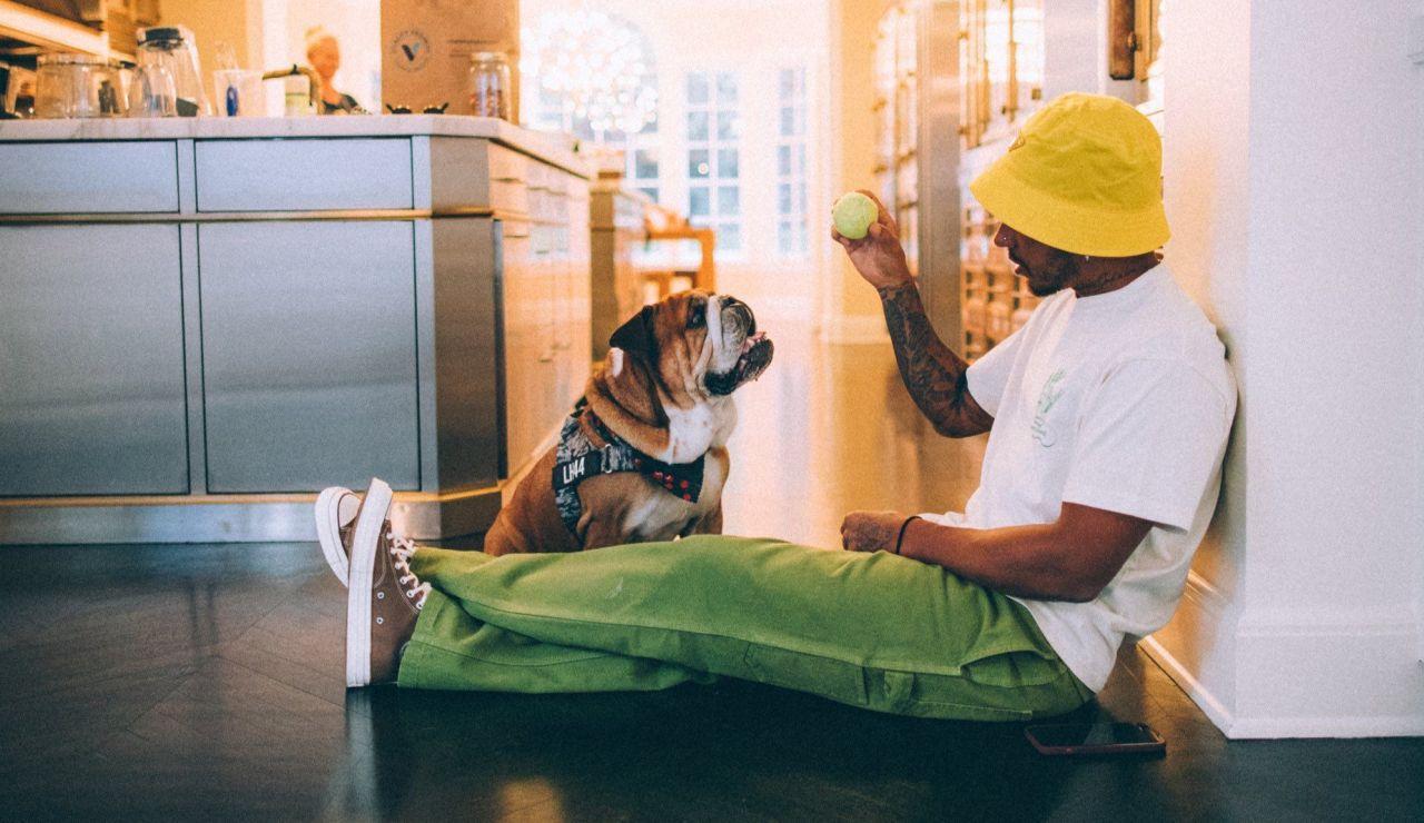 Hamilton y su bulldog