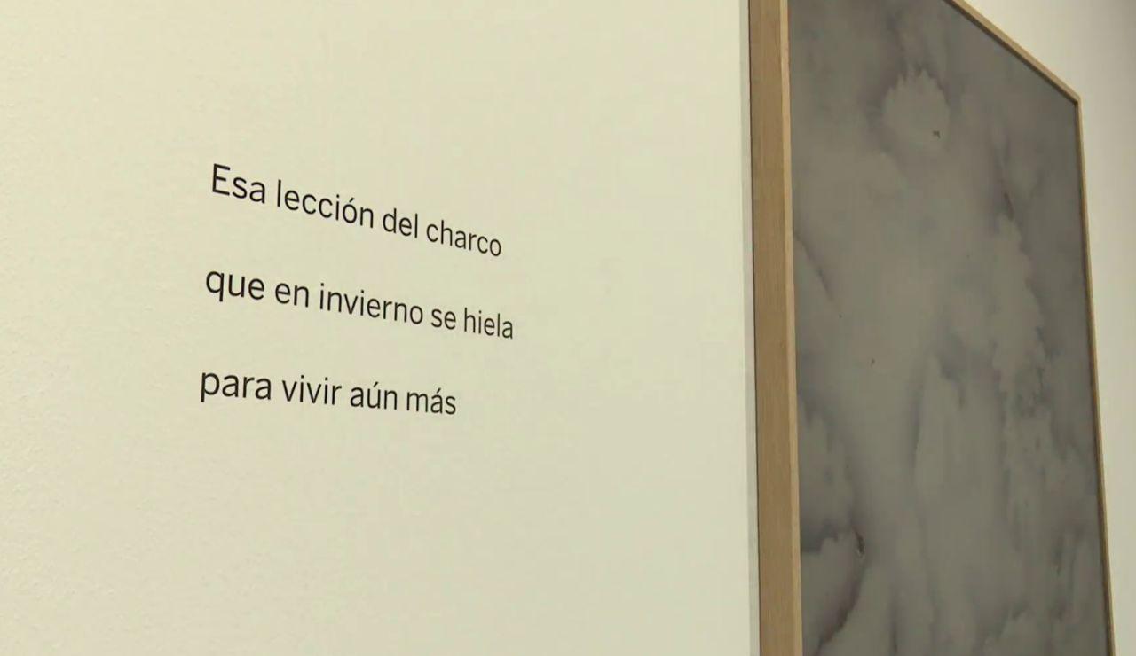 'Charcos y ballenas', una exposición que muestra fotografía y poesía en la Fundación BBVA